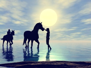 horses-482594_1280